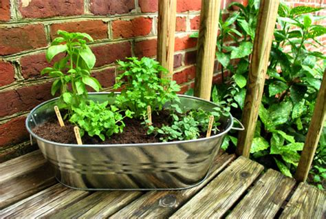 Balcony Herb Garden Ideas 65 Inspiring Diy Herb Gardens Shelterness