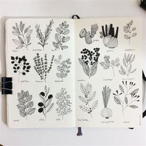 how to start a doodle page sketchbooks cooking and herbs on