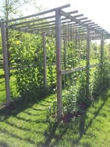 Garden Arbor Mi Grand Rapids Mi Meijer Gardens A Rustic Arbor Growing