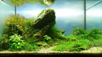 andreas ruppert and aquascaping aqua rebell