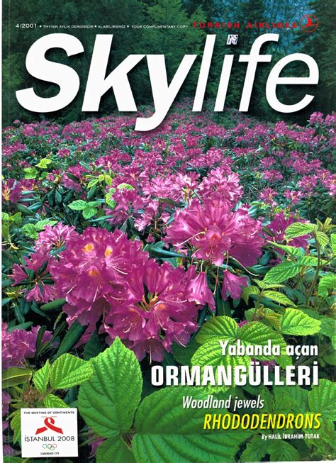 Organize Your Life 2001 04 by skylife magazine issuu