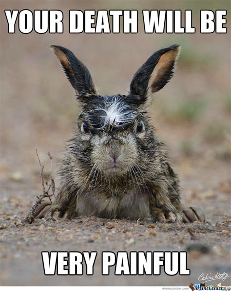 Rabbit Rage Angry Memes Image Memes At Relatably