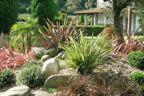 precios de plantas para jardin tu hogar y tus plantas 225 rboles y jardin