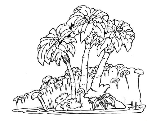 coloring pages rainforest rainforest pictures to print coloring home
