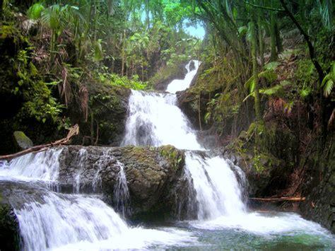 aloha haircuts hilo hours hawaii tropical botanical garden papaikou top tips