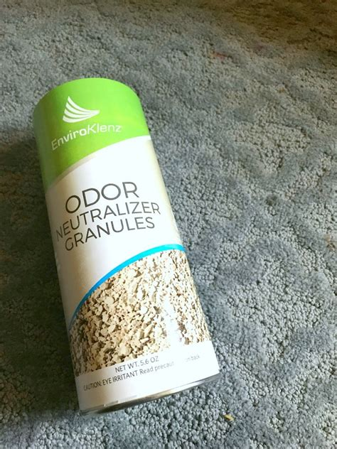 how to get a to throw up how to get vomit stains out of carpet naturally best accessories home 2017