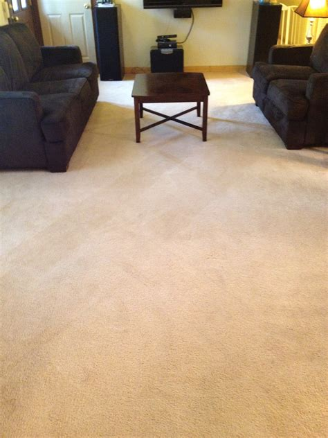rug doctor furniture carpet cleaning made fabulous with rug doctor domestic executive