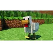 Walking Chicken  1 Hour Version YouTube