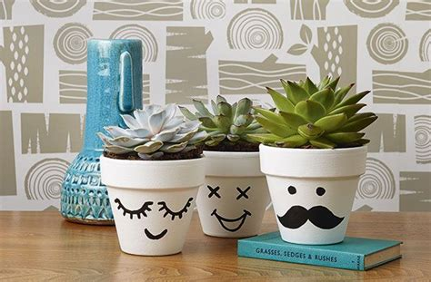 cute pots for plants make these cute funny face flower pots decorated flower