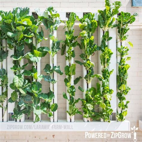 farm wall system zipgrow green wall simple productive