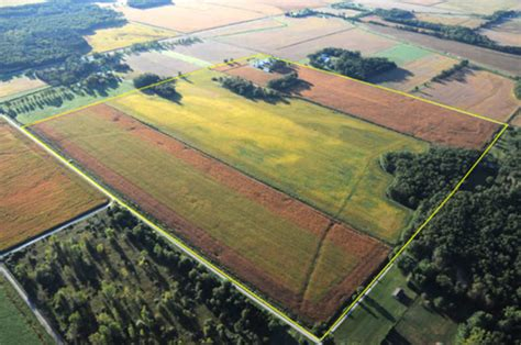 4 500 Acre Trophy Property Up For Auction Wtvr Com | 500 acres offered in 9 tracts northwest indiana real