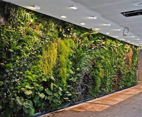 indoor garden wall fronius headquarters wels austria vertical garden blanc