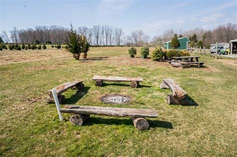 tree farms for sale in pa tree farms lancaster pa 28 images trees and decor at