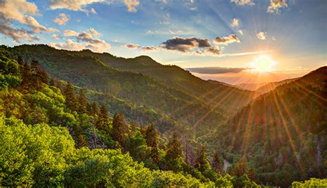 great smoky mountains national park national park trips