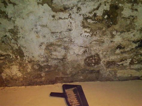 crumbling old basement walls 1868home s blog
