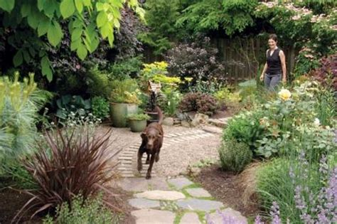 Creating A Dog Friendly Water Efficient Yard Spot Magazine Landscaping Ideas For Backyard With Dogs