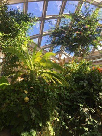 Hotels Near Denver Botanic Gardens Denver Botanic Gardens Co Top Tips Before You Go With Photos Tripadvisor
