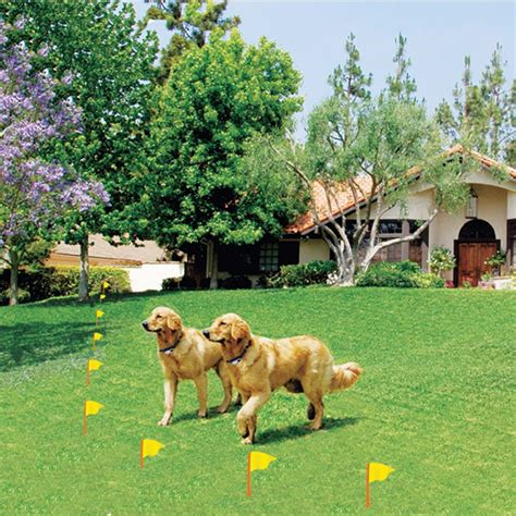 electric fence reviews wireless fence reviews wireless fence buyers guide fence by sit
