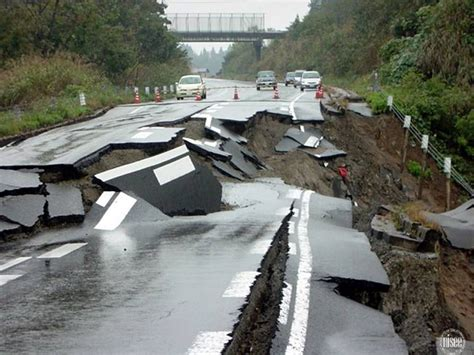earthquake effects alcs brandi brougham the devastating effects of the