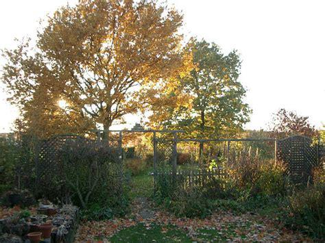 Garten Pflanzen Jahreszeit by Haralds Garten Herbst