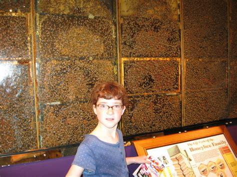 Jims Honey Megan Hell megan at the honey bee farm photo