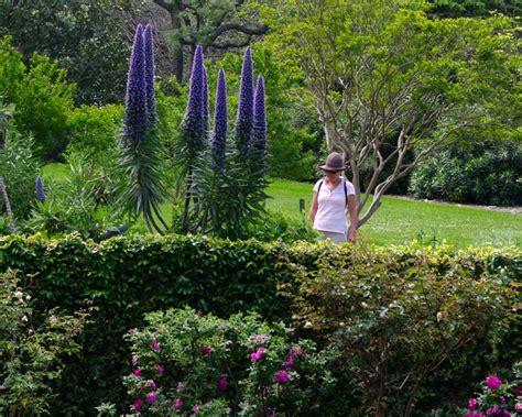 botanical garden wollongong gardensonline gardens of the world wollongong botanic