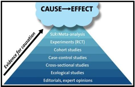 Sle Qualitative Research Published By Permission Of The Author by Quantitative Research And Assumption