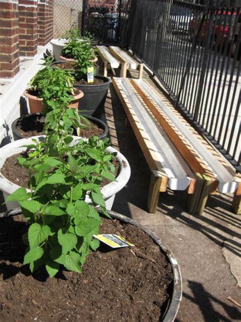 urban green rain gutter gardens update