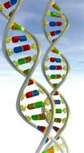 Patient Dna Letter doctors take revolutionary step towards personalising care