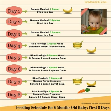 table food for babies 6 months food chart for 6 months baby gomama 24 7