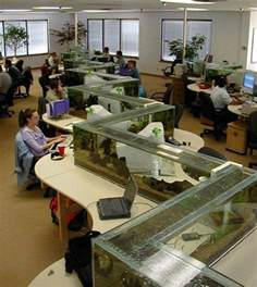 fish tank for desk at work office aquarium doubles as desk divider 171 twistedsifter