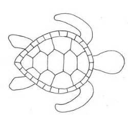Sea Turtle Swimming Outline by Turtle Template Polyvore