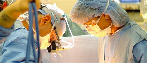 facoltà di medicina senza test d ingresso laurea in medicina senza test d ingresso ma con un corso