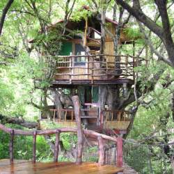 coolest treehouse in the world the world s 10 coolest treehouse hotels 171 cbs los angeles