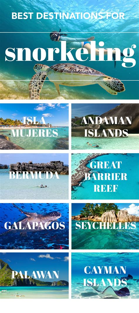 10 best snorkeling spots in the world 10 best snorkeling spots in the world destinations