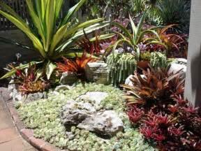 Backyard Garden Box Design 52 Succulent Garden Designs Garden Designs Design Trends