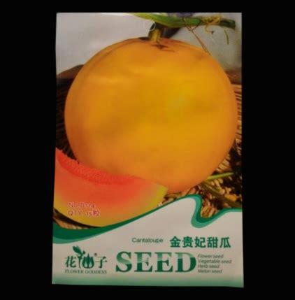Bibit Buah Melon benih retail asia golden melon 15 biji jual tanaman hias
