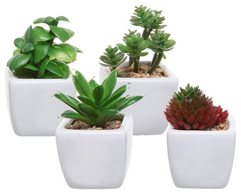 plants for small pots small artificial succulent plants in white ceramic cube planter pots set of 4 artificial