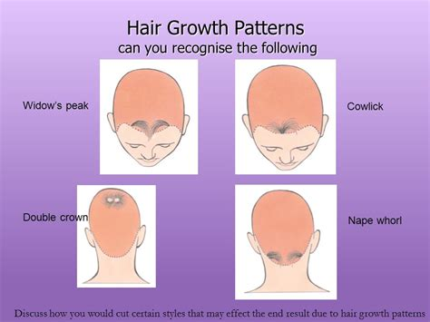hair styles for foward hair growth pattern unit 206 cutting women s hair ppt video online download