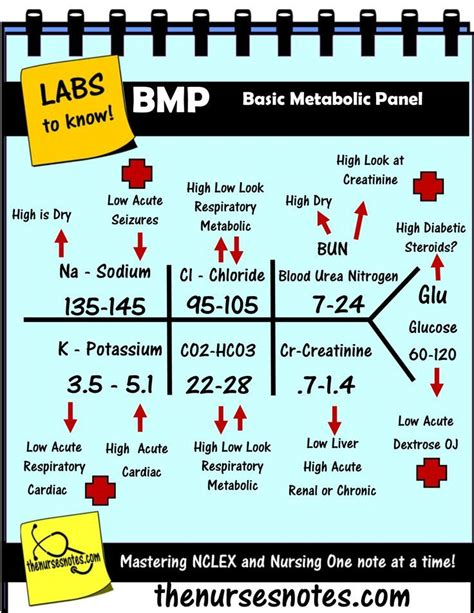 lab results diagram bmp chem7 fishbone diagram explaining labs from the