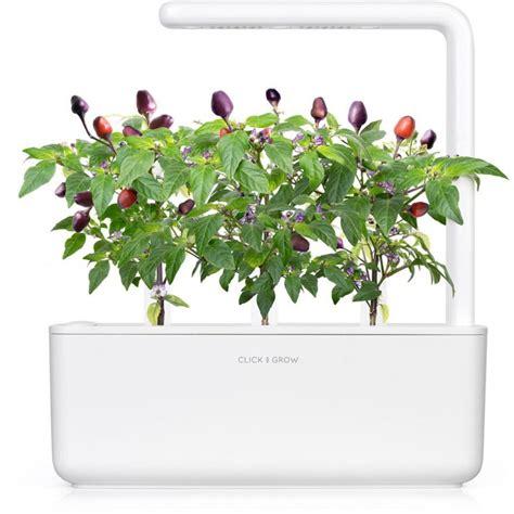 click and grow refills click grow smart garden refill purple chili pepper 3pcs