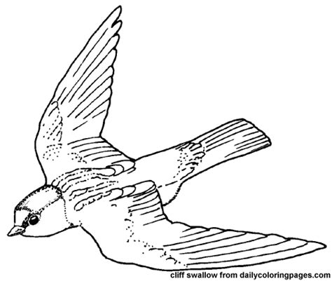 owl wings coloring page open wings not my work more found at http