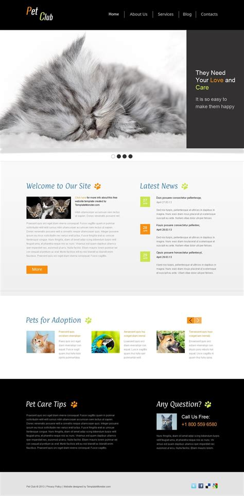 Website Template Vorlage Website Vorlage 51642