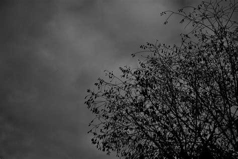 Imágenes Tristes En Blanco Y Negro | la gente ahoga su tristeza en fotos en blanco y negro