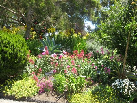 san diego botanical gardens encinitas san diego botanical gardens in encinitas gardens and