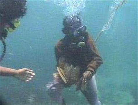 Mutiara Kerang Laut aku cinta bahari kerang mutiara