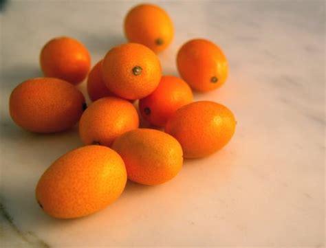 kumquat popsugar food