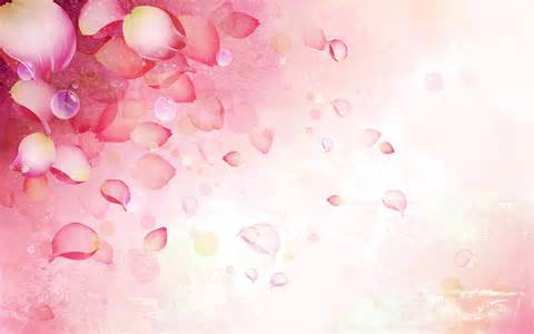 wallpaper flower petal flower petals wallpaper 580791
