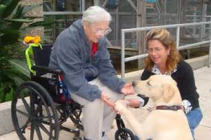 va nursing homes caring for seniors means caring for their caregivers