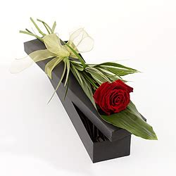 Box A Single Sky Blue Preserved Flower Represent Mystery information point roses